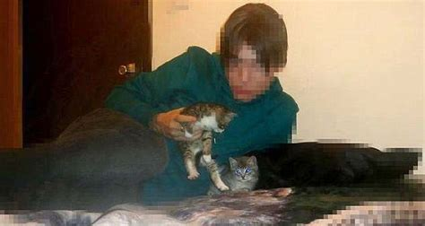 anorak news   hamburgs christmas day kitten killer chan reddit  find