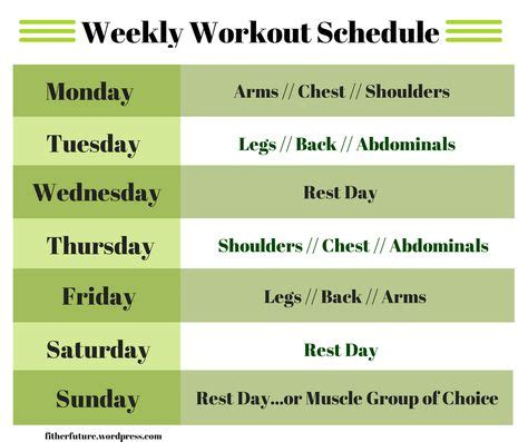 portion template portion template 27 free program templates workout routine time table eoua