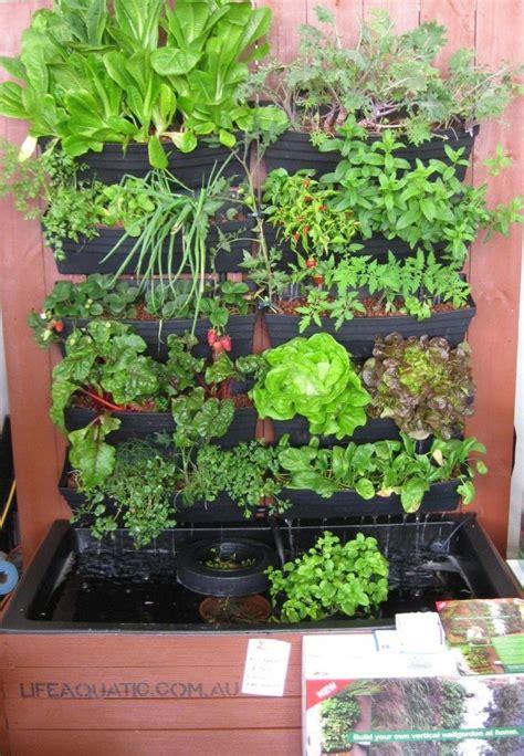 images  aquaponic gardening  pinterest