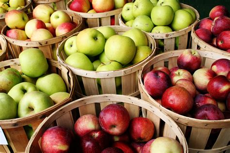 Apple For S apples crunch your way to healthy nutrition