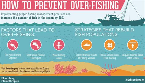 how to vibrant oceans how to prevent over fishing bloomberg