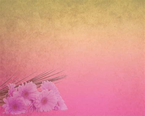 wallpaper pink elegant pink hd elegant background stock photo backgrounds stock