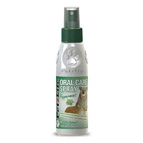 is peppermint safe for dogs petzlife peppermint care spray gel safe for both cats dogs of all breeds ebay