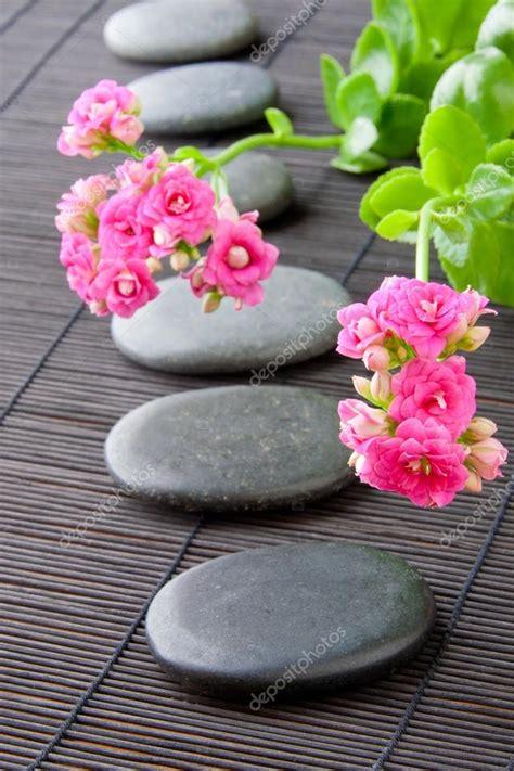 a fiori spa chemin de pierres avec des fleurs pour toile de fond de la