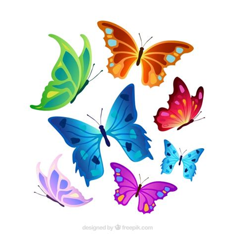 colorful butterflies selection of colorful butterflies vector free