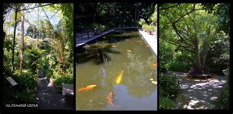 Stellenbosch Botanical Gardens Settling Into Stellenbosch South Africa Geogypsy
