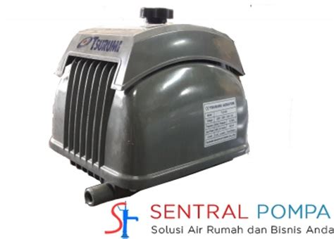 Mesin Pompa Celup Wasser Wd 80 Ef jual mesin pompa air pompa air murah by sentralpompa