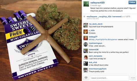 blunt best of the greatest and best blunts on instagram noisey