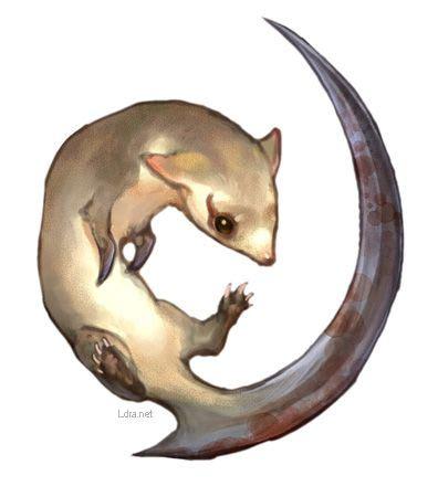 Azelva Syari By Bungas kamaitachi shaman king fanon wiki fandom powered by wikia