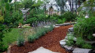 bark and lavender garden path