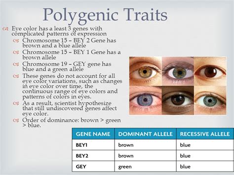 what color are dominant beyond dominant and recessive ppt