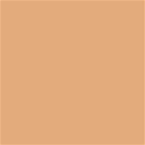 honey blush paint color sw 6660 by sherwin williams view interior and exterior paint colors and