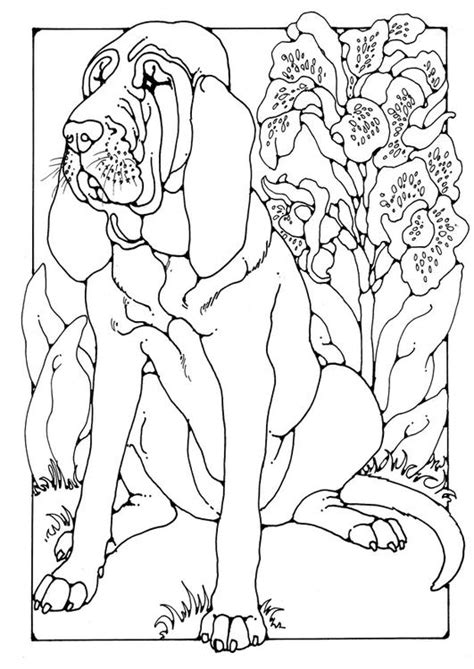 coloring pages of bloodhounds coloring page bloodhound img 28202