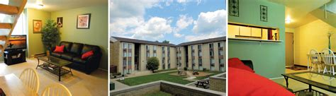 one bedroom apartments in carbondale il the quadrangle apartments carbondale il studio to 3