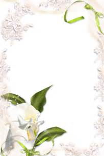 transparent calla lily png photo frame gallery