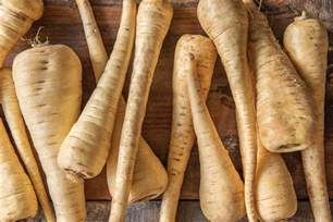 a list of root vegetables list of root vegetables the fresh times