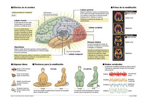 möve badvorleger el l 243 bulo frontal y la felicidad beneficios de meditar