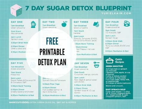 Easy Sugar Detox Meal Plan by 330 Best 21 Day Sugar Detox Images On 21 Day