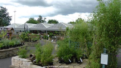 squires garden centre  milford justgardencentres