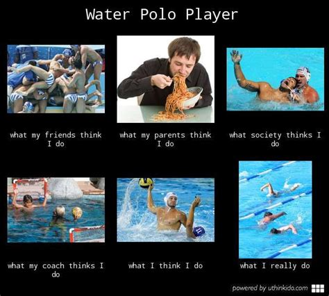 Polo Meme - 1000 images about water polo cartoons memes on