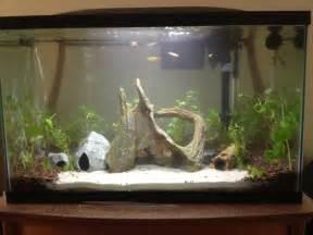 sent from my iphone using fish lore aquarium fish forum