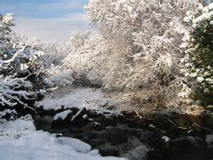 snow scenes in kerry ireland winter wonderland pinterest