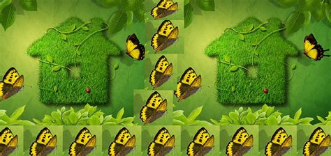 ways to be green at home go green idea 10 simple ways to go green in your home