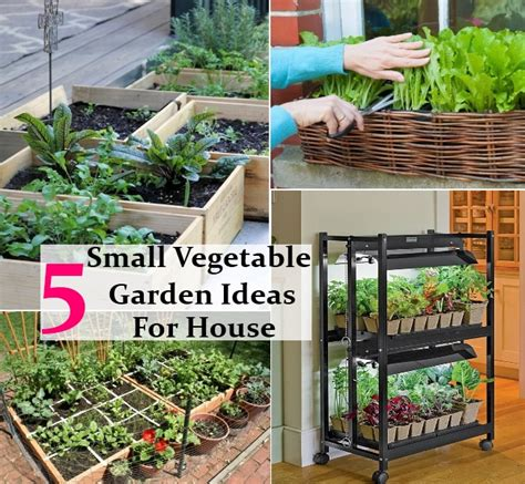 small vegetable garden ideas 5 interesting easy and small vegetable garden ideas for
