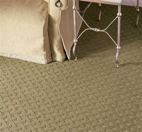 stainmasters carpet upholstery cleaning 1000 images about stainmaster 169 carpet on pinterest shaw