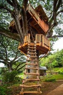 tree houses photos the treehouse guys diy