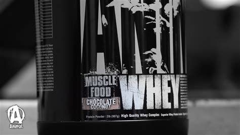 Animal Whey Chocolate animal whey protein quot chocolate coconut quot
