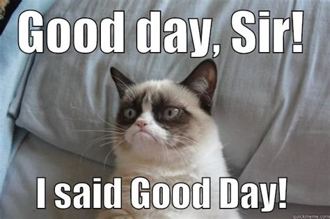 Good Day Sir Meme - discussion tor van proposals and armchair gm ing