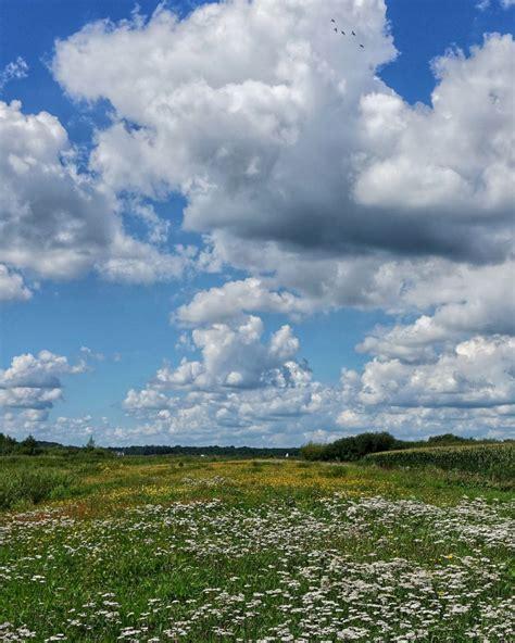 bloemen en wolken wolken bloemen en een beetje water de groeve digifoto pro