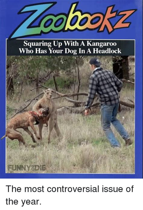 kangaroo has in headlock kangaroo memes of 2016 on sizzle dank