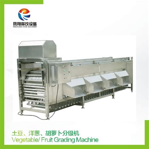 grading machine vegetable fruit grading machine fengxiang china