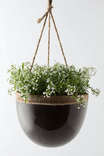 hanging planters mulberry hanging planter contemporary outdoor pots and planters by anthropologie