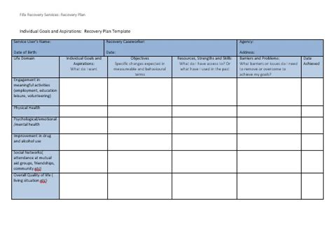 recovery action plan template plan template