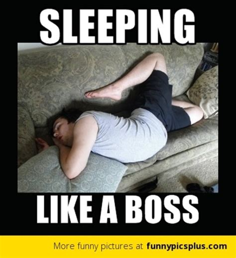 Sleeping In Meme - funny pictures of sleeping wallpaper sportstle