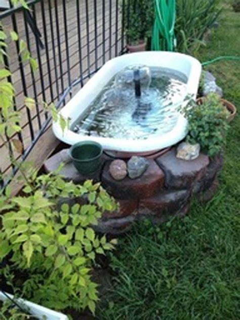 Backyard Aquarium by 1000 Ideas About Fish Ponds On Pond Ideas