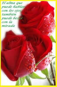 imagenes de rosas rojas con frases de buenos dias imagenes de rosas rojas para descargar gratis imagen de