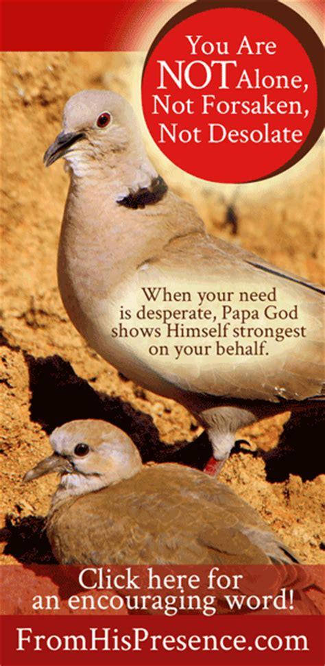 Not Forsaken you are not alone not forsaken not desolate from his