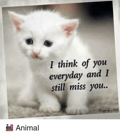 I You And Miss You Meme