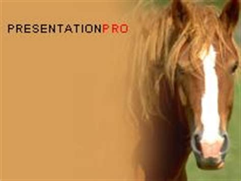 powerpoint themes horse horse powerpoint template background in agriculture
