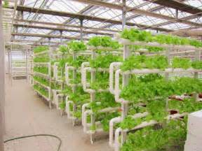 Garden Tower Vertical Container - indoor plant factory hydroponics system vertical farming buy indoor plant factory hydroponics