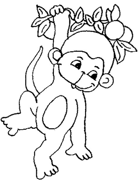 colouring monkey clipart best coloring monkey clipart best