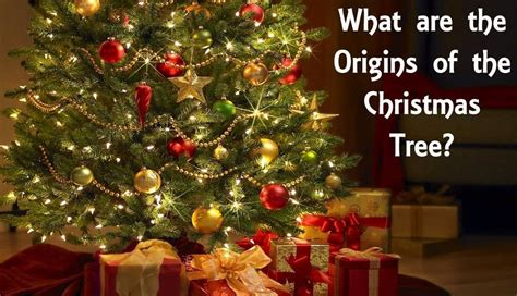 the pagan roots of the christmas tree steemit