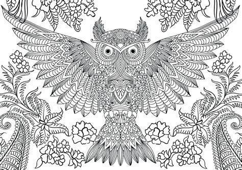 d mcdonald designs coloring book 2017 books free owl coloring page by thaneeya creative owls