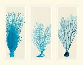blue coral in 3 panels nautical print house decor