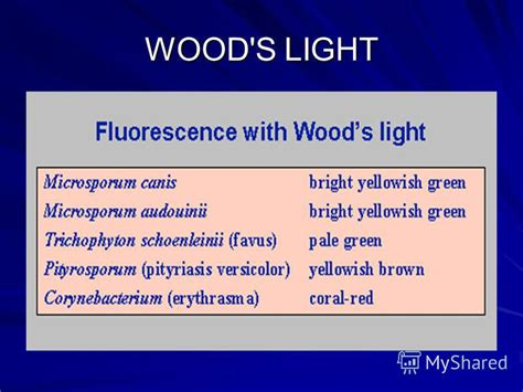 Wood S L Examination woods l examination 28 images woods l peer reviewed a