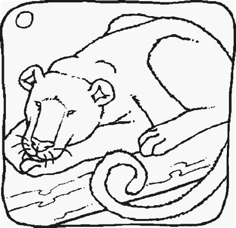 coloring page carolina panthers panther coloring pages bestofcoloring com